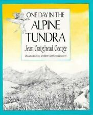 One Day in the Alpine Tundra