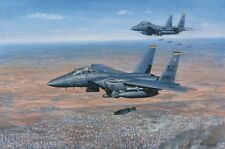 RONALD WONG F-15E Strike Eagle 4th Fighter Wing 336 Rockets Kobani ROBERT TAYLOR