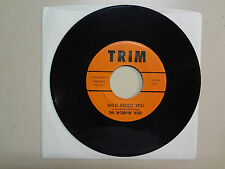 "WORRYIN' KIND:Wild About You 2:25-If You're Gone-U.S. 7"" 1967 TRIM 1323-45- 350"