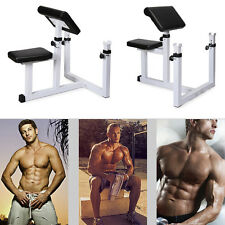 Commercial Preacher Curl Weight Bench Seated Preacher Isolated Dumbbell Biceps Y