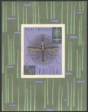 Polonia 1962 ZANZARA/medico/salute/benessere/malaria campagna Insetti/M/S n23704