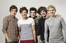 """One Direction PoP Music Group Wall Poster 36""""x24""""  D042"""