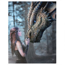 DRAGON & PRINCESS CANVAS 'ONCE UPON A TIME' BY ANNE STOKES MYTHICAL WALL ART