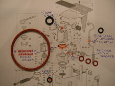 Gaggia Classic Baby Tebe Paros Evolution Etc 7x O Ring Service kit Boiler Seal
