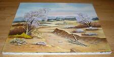 BOTANICAL GARDEN SPRING DESERT TREES NATURE LANDSCAPE ROCKS GRASS OIL PAINTING