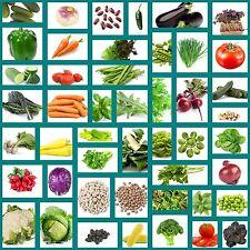Variety of Vegetable Seeds-Heirloom Seeds-47 Varieties of Vegetable Seeds-Seeds