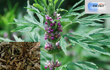 DR T&T 100g dry herb Yi Mu Cao (Chinese Motherwort)