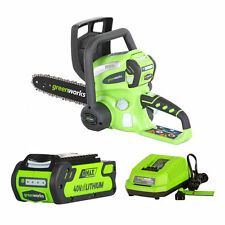 """Greenworks G-Max (12"""") 40-Volt, 2Ah Lithium-Ion Cordless Chain Saw w/ Battery..."""