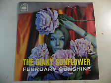 "THE GIANT SUNFLOWER ""FEBRUARY SUNSHINE/BIG APPLE"" SOLO COPERTINA NO 45 GIRI"