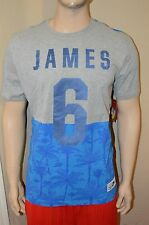 Nike Lebron James 6 Palms South Beach Gray/Blue Men's Basketball T Shirt Size M