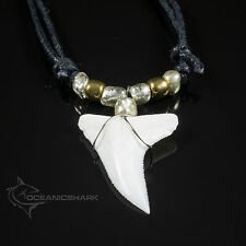 SHARK TOOTH PENDANT FISHING DIVING SPEARFISHING CHARM GOLDEN SUNRISE BEADS C18