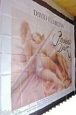 david hamilton PREMIERS DESIRS !  affiche cinema erotique  format geant 4x3m
