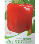 FD1287 Red Sweet Pepper Seed Vegetable Seed ~1 Pack 8 Seeds~ Free Shipping