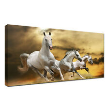 Large HORSES ANIMAL Canvas A1 size  20x30inch Wall Art Picture for Any room