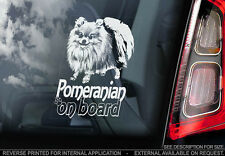 Pomeranian - Car Window Sticker - Dog Sign -V02