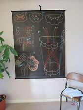 VINTAGE DR AUZOUX SOUGY PULL DOWN MEDICAL SCHOOL WALL CHALK CHART OF BRAIN BULB
