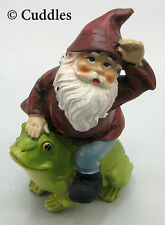 Garden Gnome Sitting On Frog Figurine Ganz Fairy Outdoor Fantasy Mini Nature N
