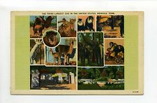 Memphis Tenn TN Third Largest Zoo in the United States linen multi view postcard