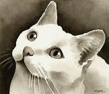 WHITE CAT note cards by watercolor artist DJ Rogers