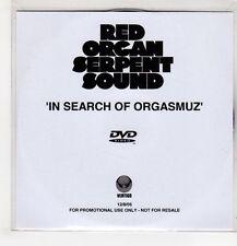 (GU461) Red Organ Serpent Sound, In Search Of Orgasmuz - 2005 DJ DVD