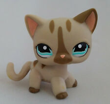 Hasbro  Little Pet Shop Collection LPS Cute Cat with Blue Eyes