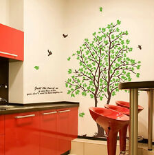 The Beautiful Green Big Tree Wall Stickers,Wall Decals A_OFE
