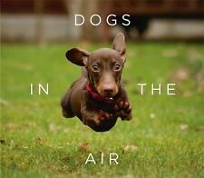 Dogs in the Air by Jack Bradley (2016, Hardcover)