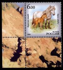 Pferd aus der Republik Sacha (Jakutien). 1W. Eckrand (3). Rußland 2006