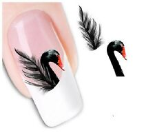 Nail Art Sticker Water Decals Transfer Stickers Black Swans Feathers (DX1553)