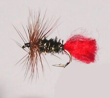 12 Pack-forelle Dry Fly Rot Tag Größe 14