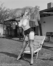 B837 8x10 MEGA-BUSTY 1960s Pinup, JANEY REYNOLDS #2A * HUGE BREASTS! (NUDES)