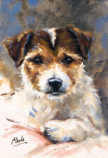 Jack Russell Terrier, dog Christmas cards pack of 10 by Paul Doyle C436x