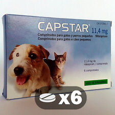 CAPSTAR 11,4 MG - ANTI PUCES CHIENS PETITS / CHATS