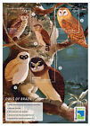 Mayreau Grenadines of St. Vincent -2013-Birds-Owls of Brazil