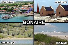 SOUVENIR FRIDGE MAGNET of BONAIRE NETHERLANDS