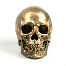 NEW Human Skull Replica Resin Model Medical Realistic lifesize 1:1 Color Bronze