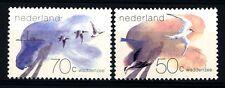 OLANDA - HOLLAND - 1982 - Il mare di Wadden. Uccelli.