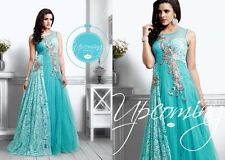 Ragini women net with embroidery work gown dress sky blue