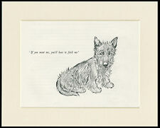 SCOTTISH TERRIER CHARMING 1930'S DOG SKETCH PRINT by KF BARKER MOUNTED