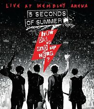 5 SECONDS OF SUMMER - HOW DID WE GET HERE? BLU-RAY DISC (November 20th, 2015)