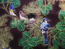 Hoffman Aspen Creek Bird Blue Jay Nest Pine Brown Gold Fabric Yard