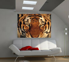 Tiger Muzzle large giant animals poster print photo mural wall art ia561