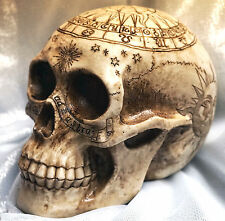 LARGE Realistic ASTROLOGY ZODIAC SYMBOLS INSCRIBED SKULL Figure Resin