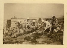 PHOTO ANCIENNE - VINTAGE SNAPSHOT - MER PÊCHE COQUILLAGE FEMME - FISHING SEA