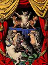 A4 Photo Evans Edmund Little Pussy cats 1870 The Dance Print Poster