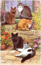 """""""Floral Cats"""" Cat Tea Towel - Samuel Lamont Design 100% Cotton"""