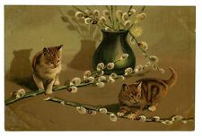 vintage cat postcard Mailick cute tabby cats play w pussy willow from vase 1904