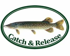 3x5 inch Oval PIKE Catch & Release Sticker - decal fish fishing fisher northern