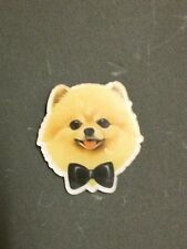 Celebrity Cute Boo Dog POmeranian Paws Bowtie Kitsch Funky Christmas Gift Brooch