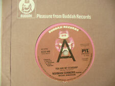 NORMAN CONNORS YOU ARE MY STARSHIP buddah uk demo / promo 449